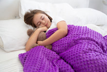 Load image into Gallery viewer, Purple Weighted Bamboo Blanket & Mink Cover 2.3kg - Changing Seasons