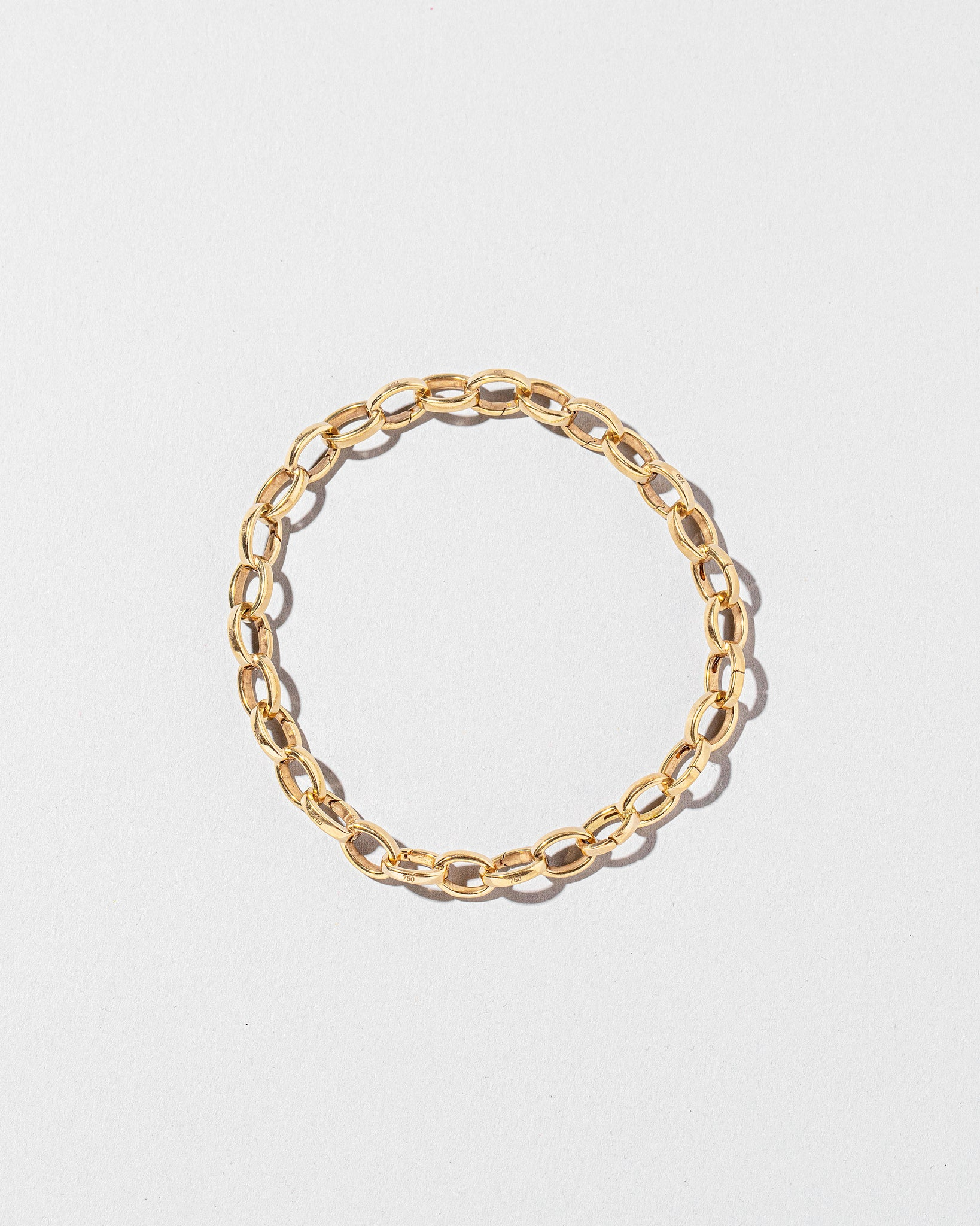 Endless Clasp Bracelet on light color background