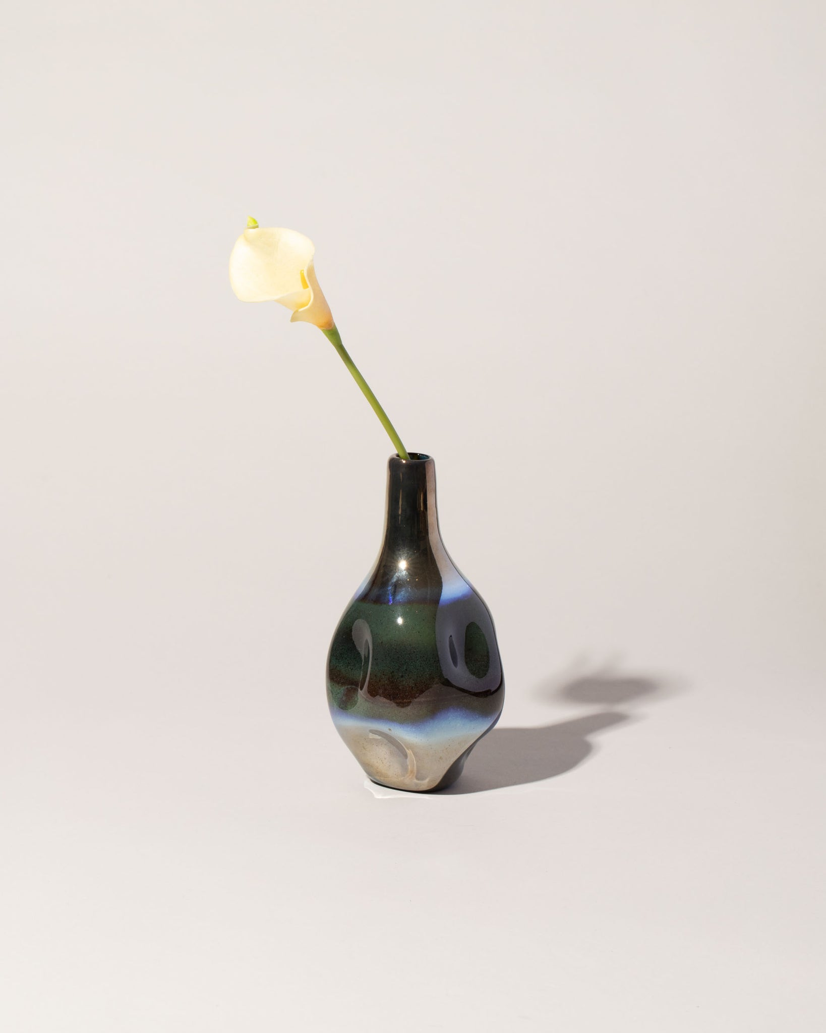 Long Neck Bottle Vase with Flower