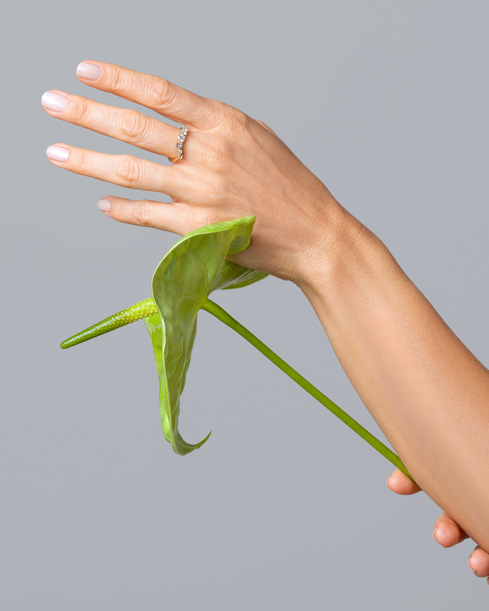 Bound Band on model, styled photo. Model wearing Bound Band holds a green lily in one hand and touches it to the bottom of other hand.