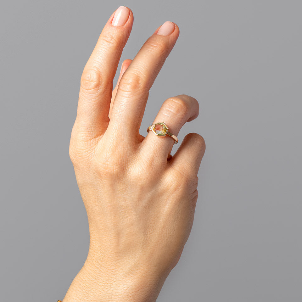 product_details::Biollante Ring on model