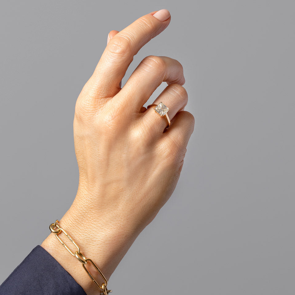 product_details::Integral Ring on model