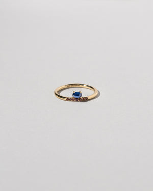 Stacked Sapphire Ring with Pavé Ant Hill Garnets Front View