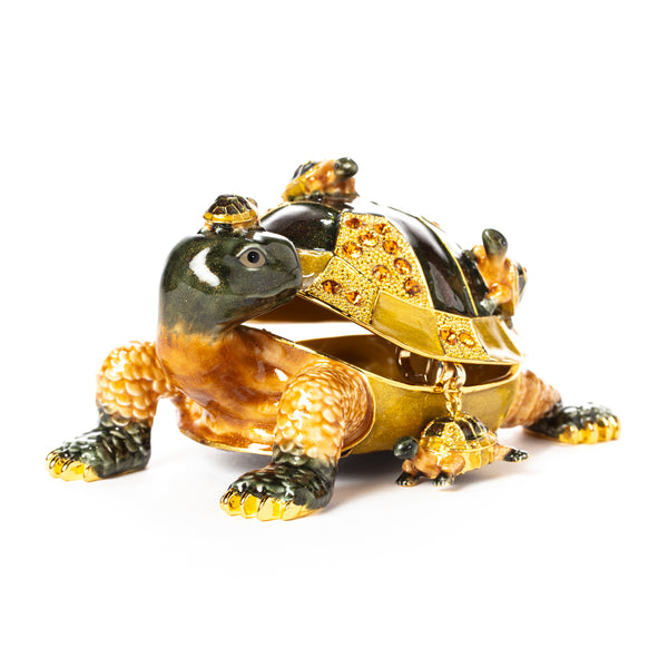 Longevity Turtle Pill Box with Necklace