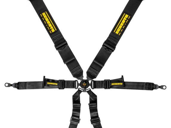 Schroth Harnesses 991/GT4