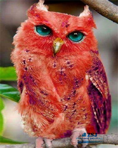 Red Owl Diamond Painting Kit