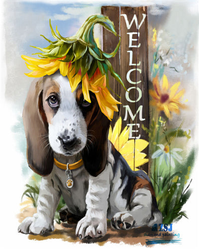 Cute Welcome Dog