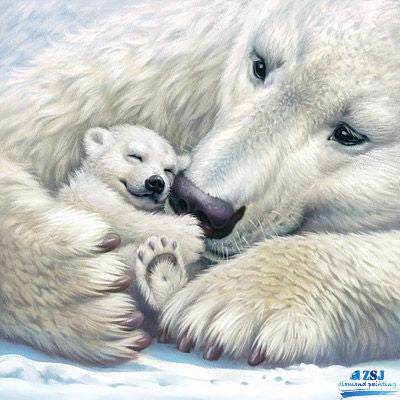 Baybe Bear with Mother