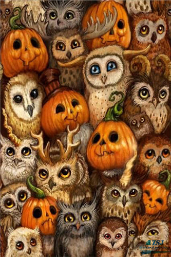 Owls And Pumpkin