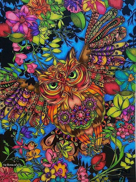 Art Color Owl