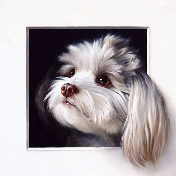 Dog Comes Out Of The Picture Frame