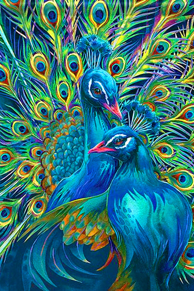 Peacock Lovers