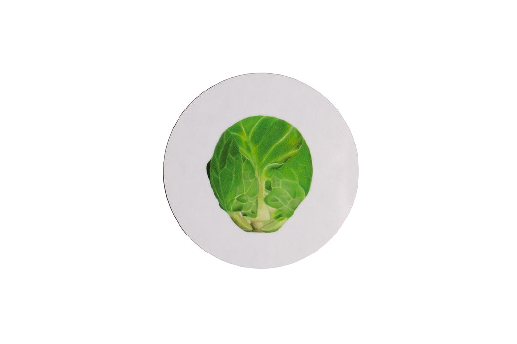 White Sprout Coaster