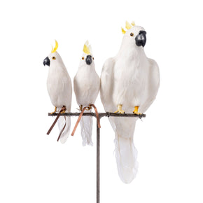 ARTIFICIAL BIRDS / Parrot