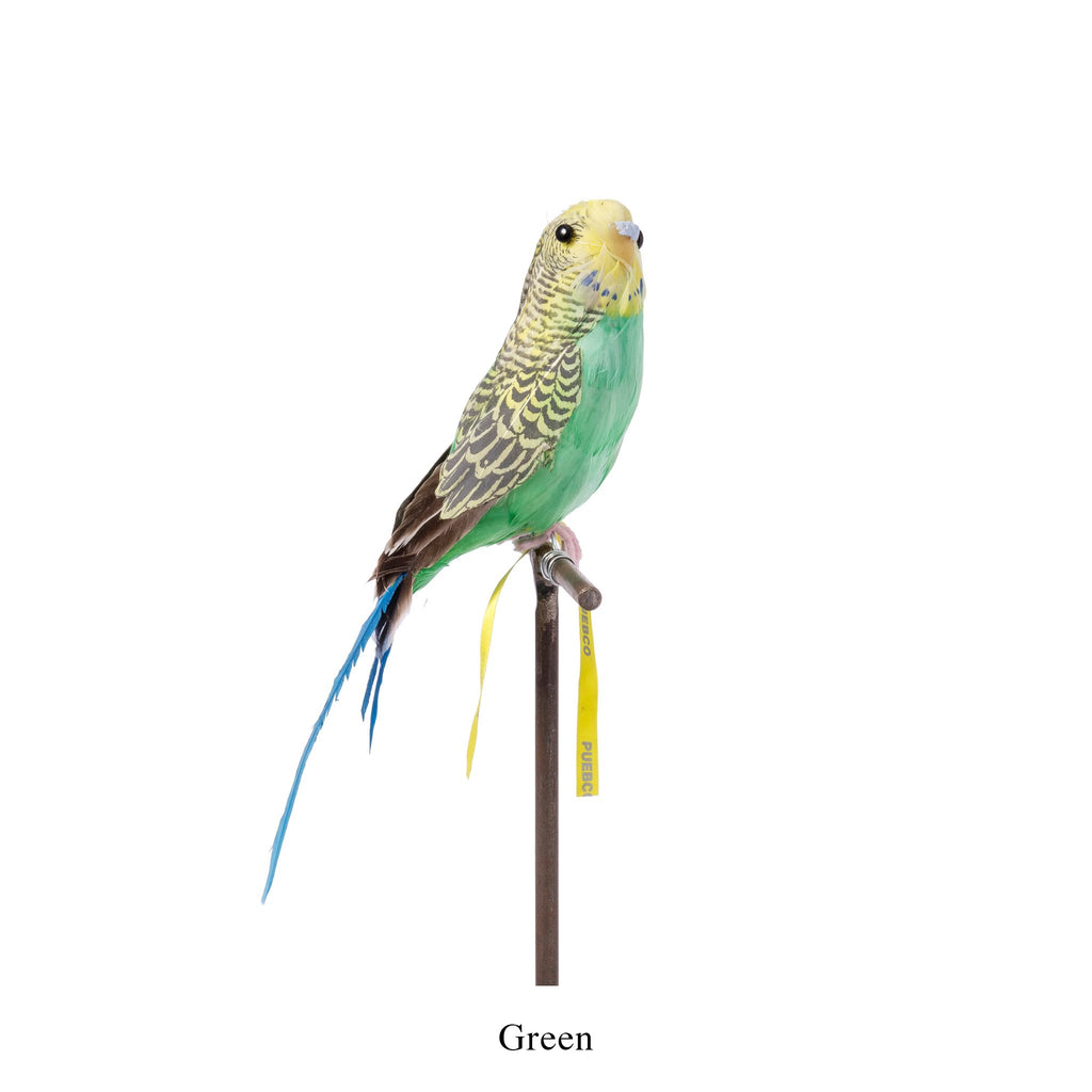 ARTIFICIAL BIRDS / Budgie