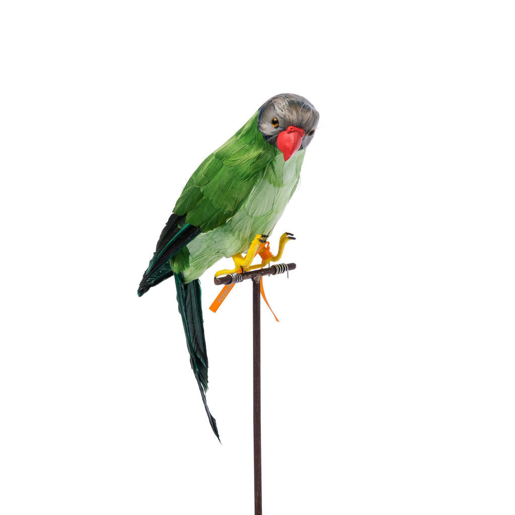 ARTIFICIAL BIRDS / Green Parrot