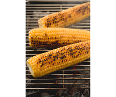 The Best Tips for Grilling Sweet Corn