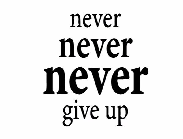 """Never ....Give Up"" Motivational Quotes Vinyl Wall Decals"