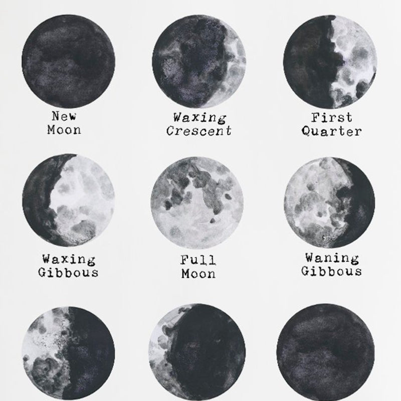 Space Lunar Cycle- Moon Phase Art Canvas