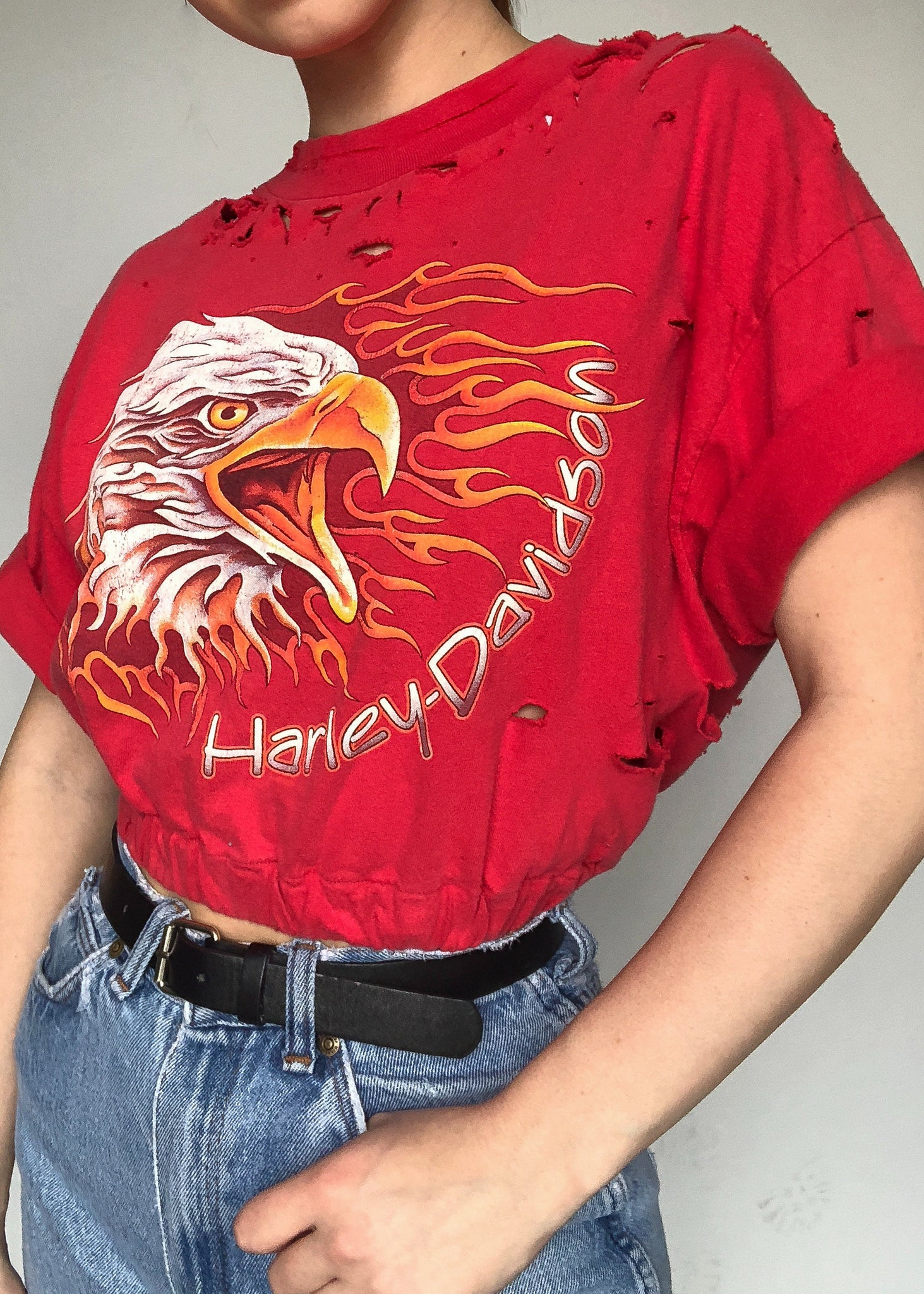 Flamin' Harley Crop