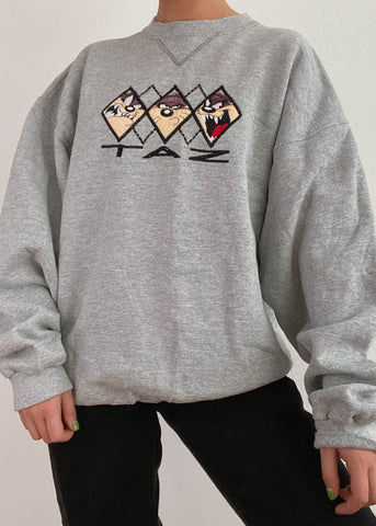 Taz Expressions Pullover