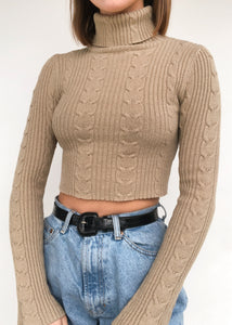 Whole Wheat Turtleneck