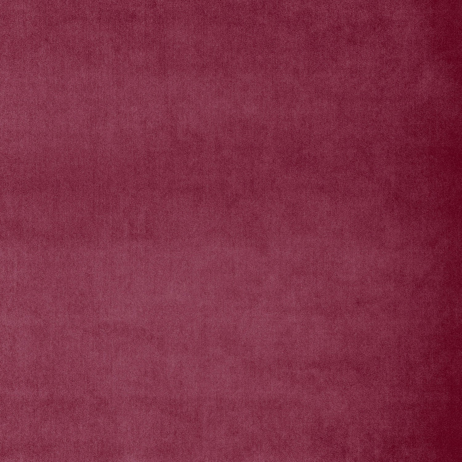 Fabric swatch of a luxury berry velvet fabric for curtains and upholstery with a stain resistant