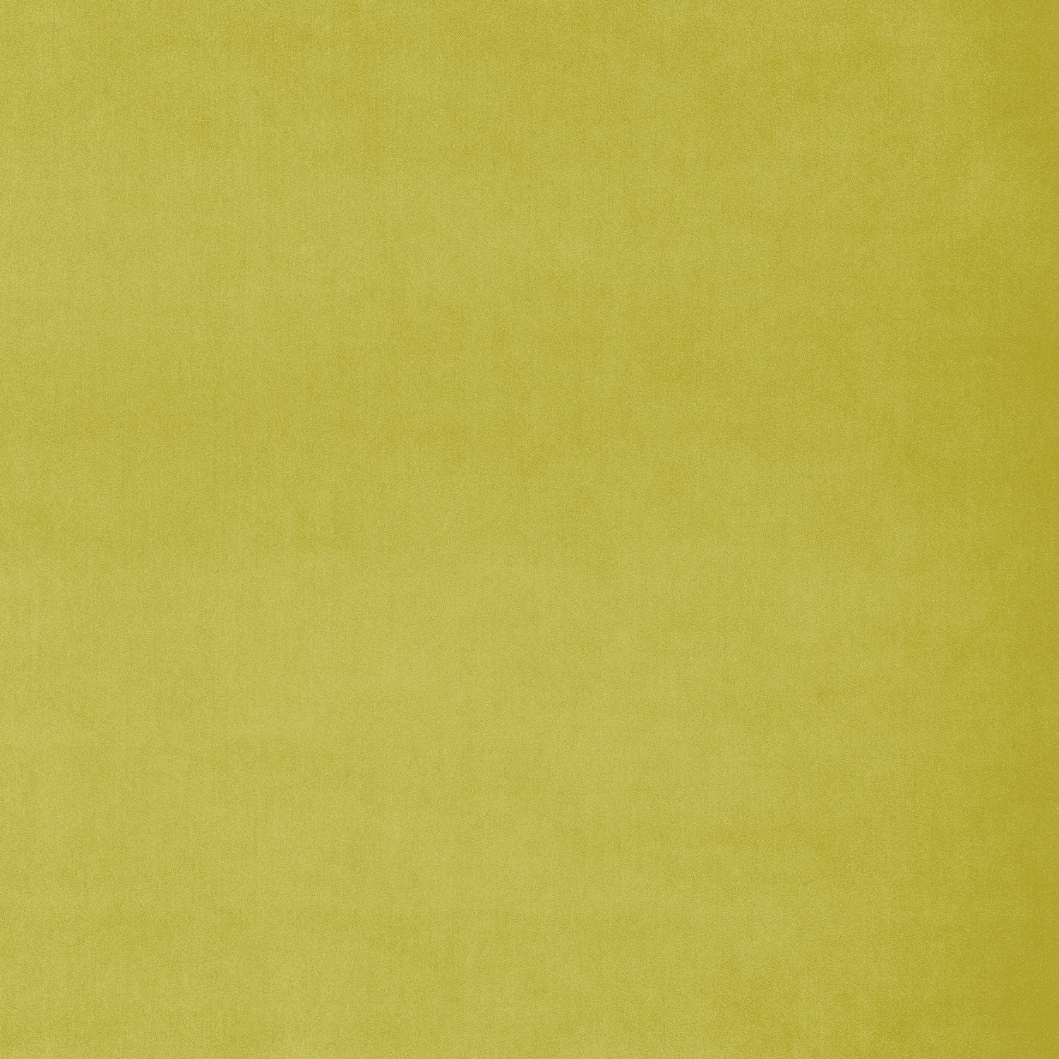 Fabric swatch of a yellow-green plain velvet fabric for curtains and upholstery with a stain resistant finish