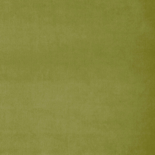 Fabric swatch of a plain pistachio green luxury velvet fabric for curtains and upholstery