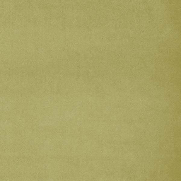 Fabric swatch of a plain green luxury velvet fabric for curtains and upholstery with a stain resistant finish