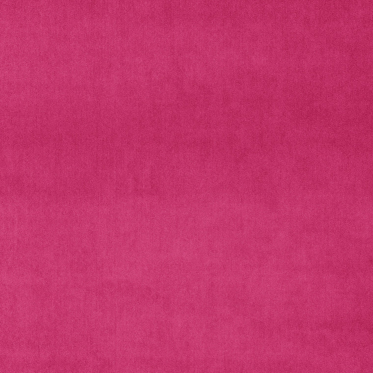 Vibrant plain pink luxury velvet fabric for curtains and upholstery with a stain resistant finish