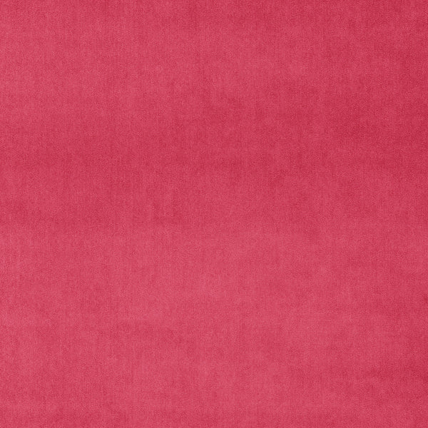 Luxury plain bright pink velvet fabric for curtains and upholstery with a stain resistant finish
