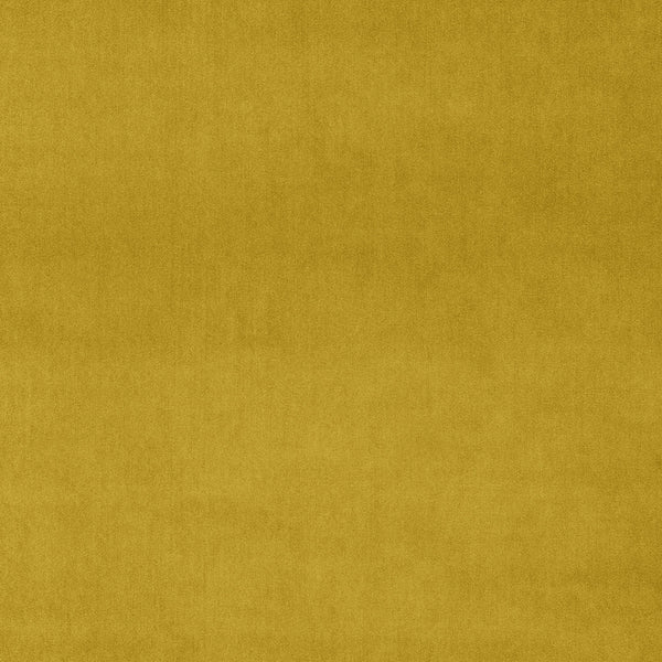 Golden yellow velvet fabric for curtains and upholstery with a stain resistant finish