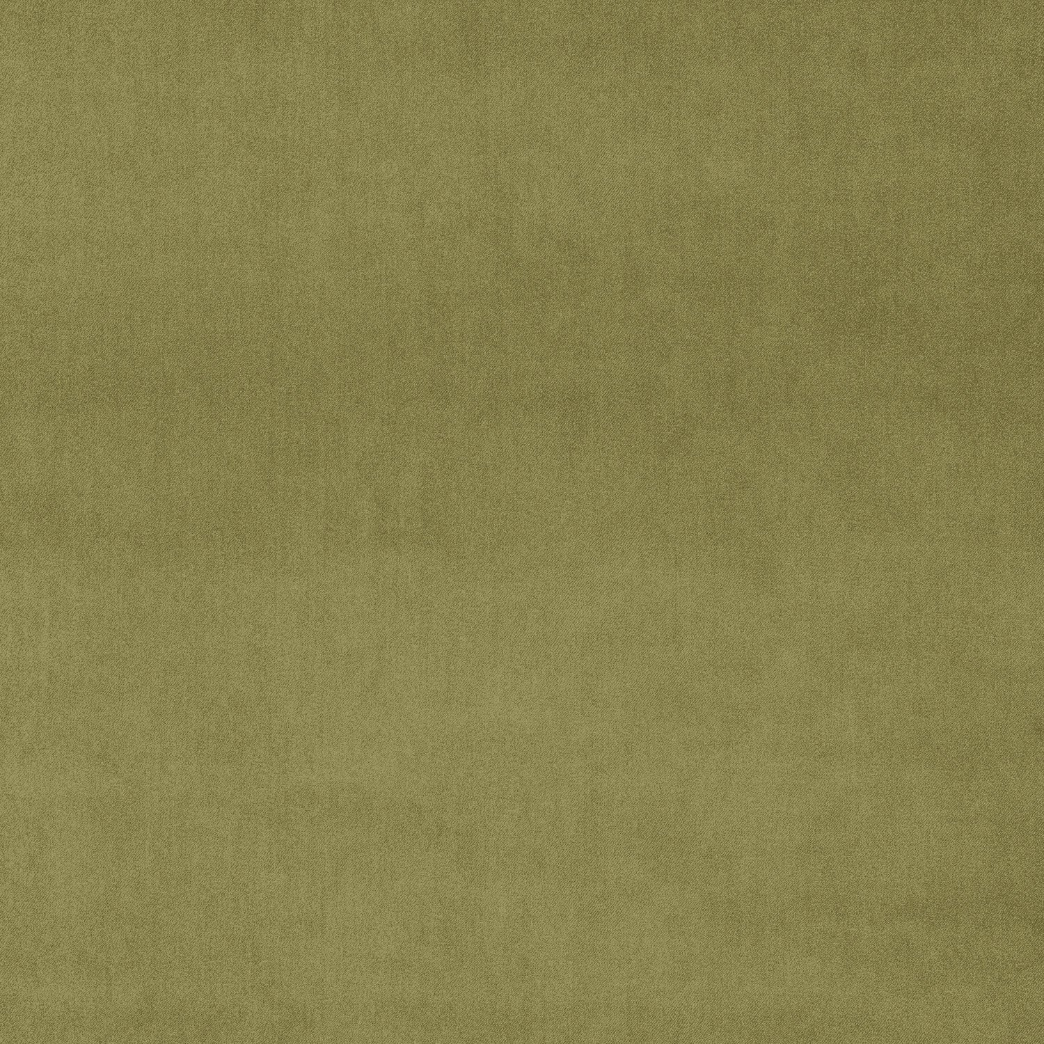 Sage green velvet fabric for curtains and upholstery with a stain resistant finish