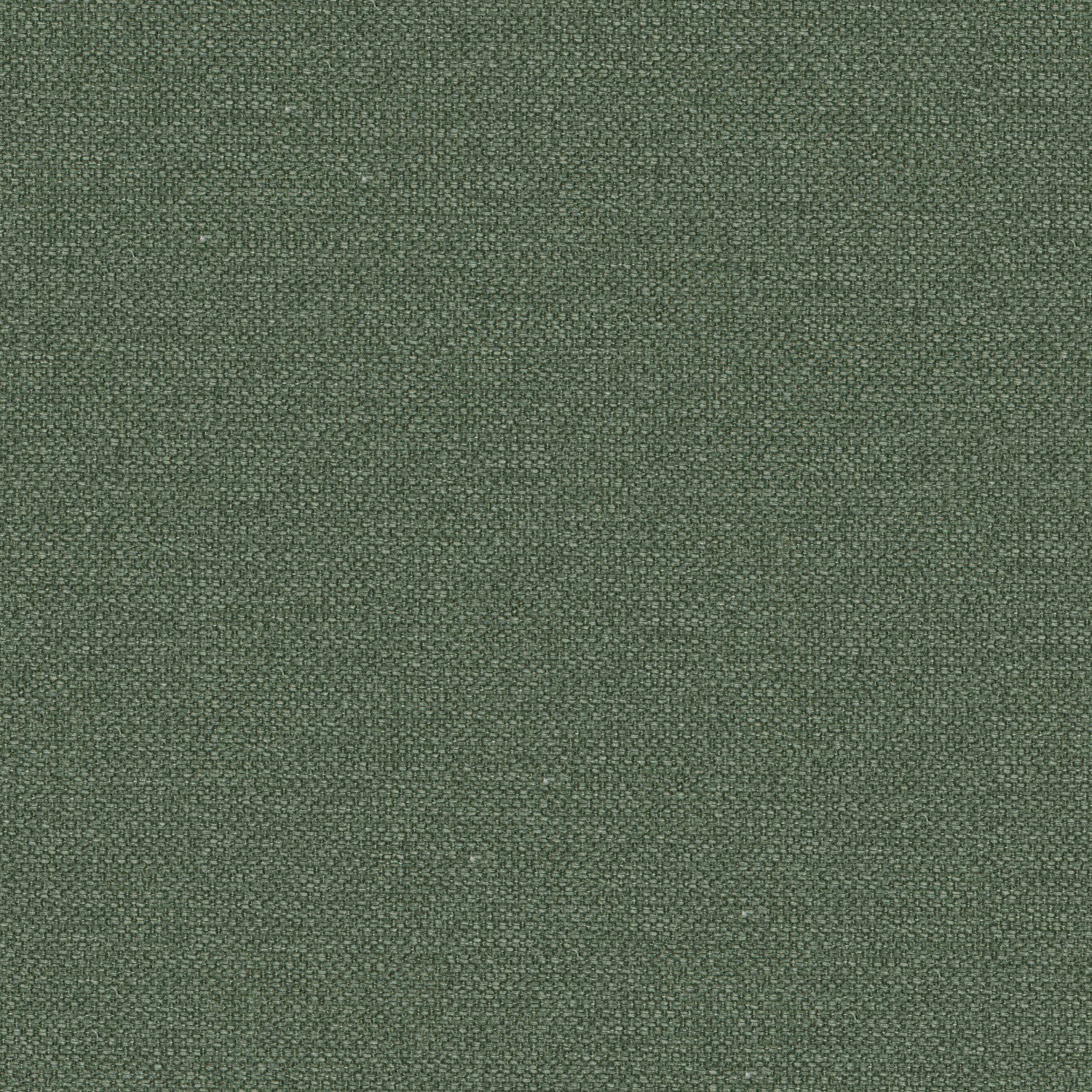 Sage green cotton fabric suitable for curtains and upholstery