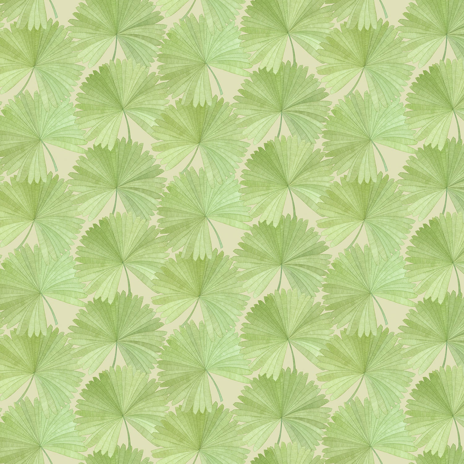 Luxury wallpaper featuring a tropical palm design in green colours