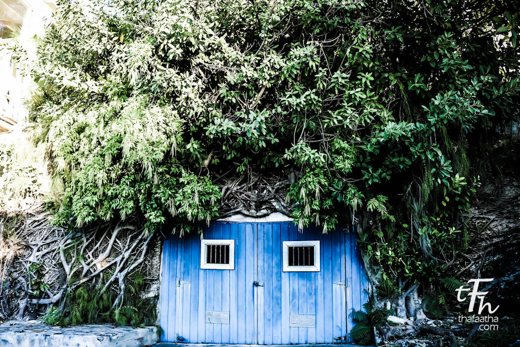 Rock House Blue Door in the Bahamas.