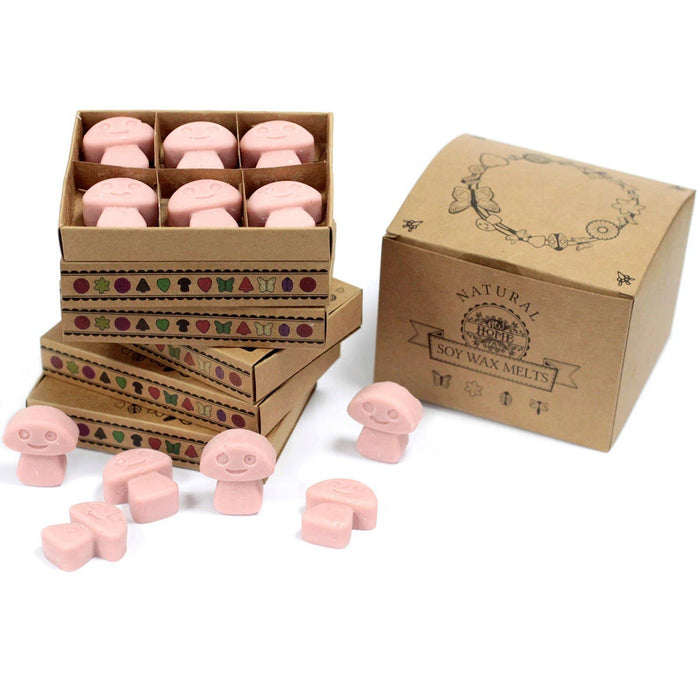 Box of 6 packs Wax Melts - Coffee Trader Twin Pack - Simply Utopia