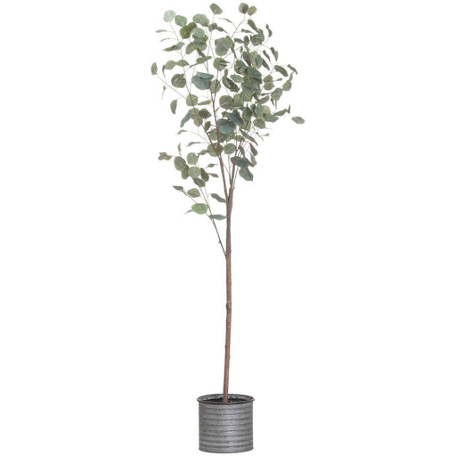 Large Eucalyptus Tree In Metalic Pot - Simply Utopia