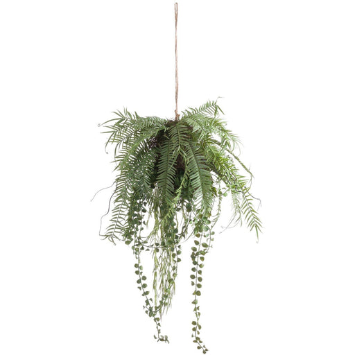 Fern Hanging Basket Arrangement - Simply Utopia