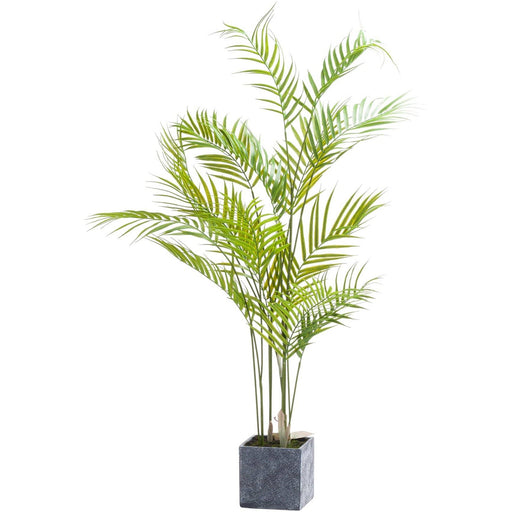 Parasdise Potted Palm - Simply Utopia
