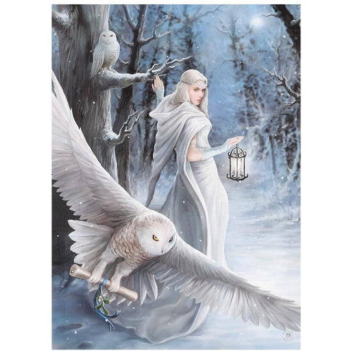 50x70cm Midnight Messenger Canvas Plaque by Anne Stokes - Simply Utopia