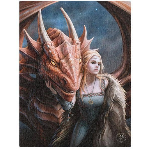 Friend or Foe Canvas Plaque by Anne Stokes 19x25cm - Simply Utopia