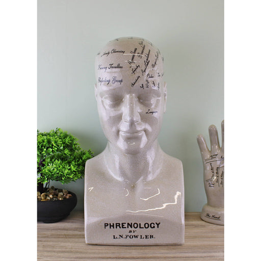 Ceramic Phrenology Head With A Quote From Mr L N Fowler Crackled Finish - Simply Utopia