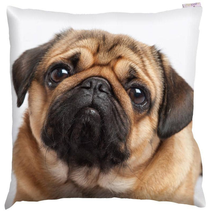 Decorative Pug Print Cushion - Simply Utopia