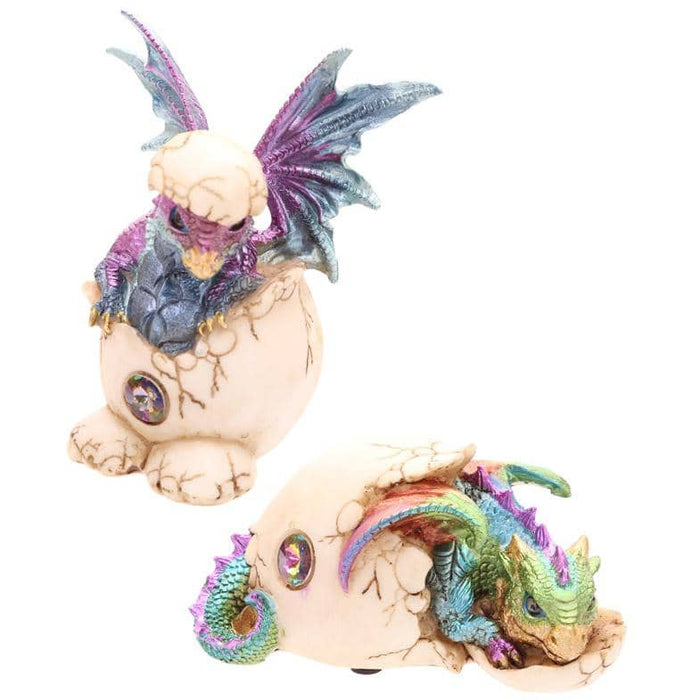 Cute Hatching Baby Dragon Figurine - Simply Utopia