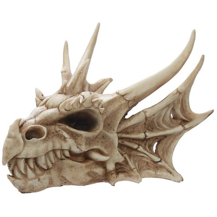 Collectable Dragon Skull - Simply Utopia