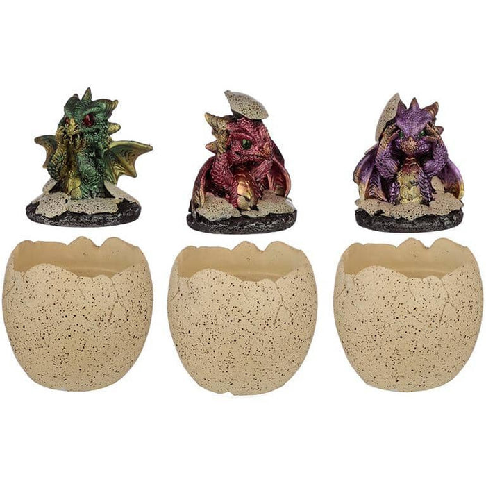 Hatching Elements Dragon Egg Trinket Box - Simply Utopia