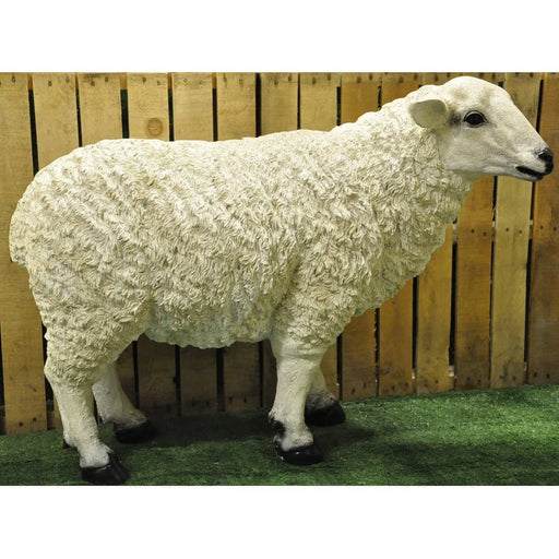 Full Size Resin Garden Sheep - Simply Utopia