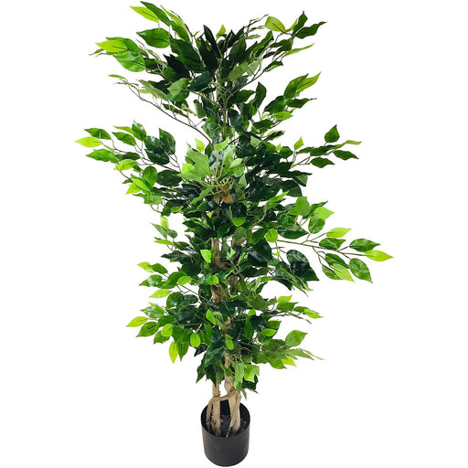 Ficus Tree with Natural Trunk 125cm - Simply Utopia